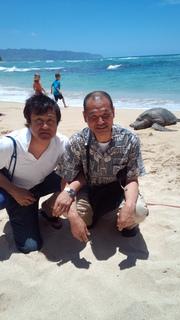 IMG_20130520_ハワイのウミガメ.jpg